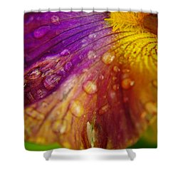 Color And Droplets Shower Curtain by Jeff Swan
