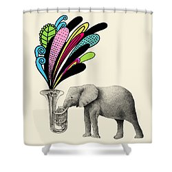 Color Burst Shower Curtain by Eric Fan