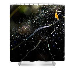 Shower Curtain featuring the photograph Color Dots Spider Net by Yulia Kazansky