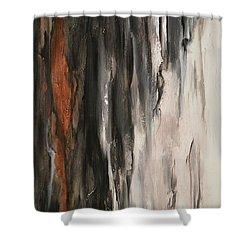 Color Harmony 19 Shower Curtain