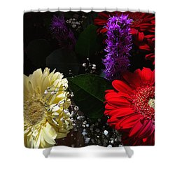 Shower Curtain featuring the photograph Color Me Dark by Meghan at FireBonnet Art