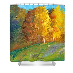 Color Shower Curtain by Nancy Merkle