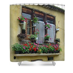 Color Of Life Shower Curtain by Floria Varnoos