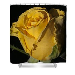 Color Of Love Shower Curtain by Miguel Winterpacht