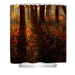 Color On The Forest Floor Shower Curtain