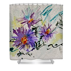 Colorado Asters Shower Curtain by Beverley Harper Tinsley