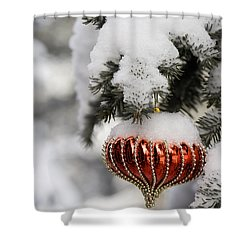 Colorado Christmas 2 Shower Curtain