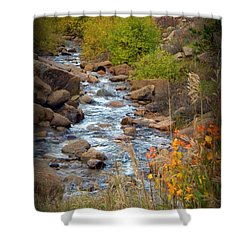 Shower Curtain featuring the photograph Colorado Fall Stream by Michelle Frizzell-Thompson