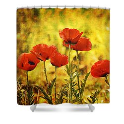 Shower Curtain featuring the photograph Colorado Poppies by Tammy Wetzel