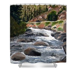 Shower Curtain featuring the painting Colorado Rapids by Jamie Frier