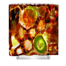 Colorful Abstract Shower Curtain by Ausra Huntington nee Paulauskaite