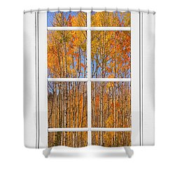 Colorful Aspen Tree View White Window Shower Curtain by James BO  Insogna