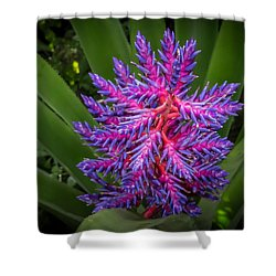 Colorful Bloom Shower Curtain