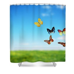 Colorful Buttefly Spring Field Shower Curtain by Michal Bednarek