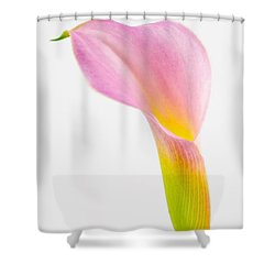 Colorful Calla Lily Flower Shower Curtain