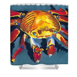 Colorful Crab Shower Curtain by Stephen Anderson