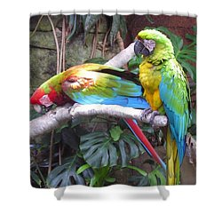 Colorful Duo Shower Curtain
