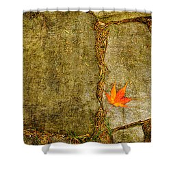 Colorful Fall Leaf On Stone Shower Curtain by Marianne Campolongo