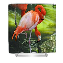 Colorful Flamingo Pair Shower Curtain