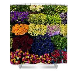 Colorful Flowers Background Shower Curtain by Michal Bednarek