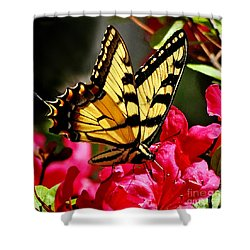 Colorful Flying Garden Shower Curtain