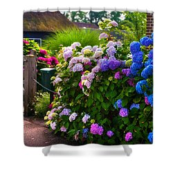 Colorful Hydrangea At The Gate. Giethoorn. Netherlands Shower Curtain by Jenny Rainbow