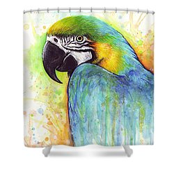 Macaw Painting Shower Curtain by Olga Shvartsur