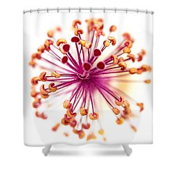 Colorful Macro Flower Shower Curtain by Susan Stone