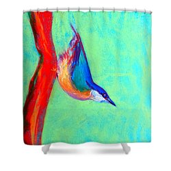 Colorful Nuthatch Bird Shower Curtain