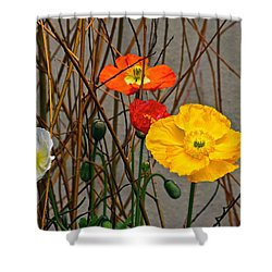 Colorful Poppies And White Willow Stems Shower Curtain