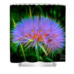 Colorful Puffball Shower Curtain