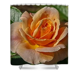 Colorful Rose Shower Curtain