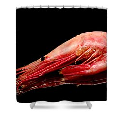 Colorful Shrimp Shower Curtain by Tommytechno Sweden
