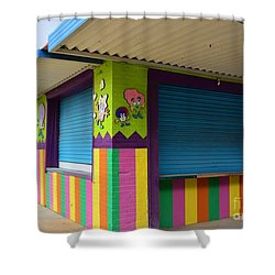 Colorful Stripes  Shower Curtain by Bob Sample