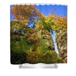 Colorful Trees In The Elbe Sandstone Mountains Shower Curtain