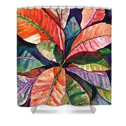 Colorful Tropical Leaves 1 Shower Curtain by Marionette Taboniar