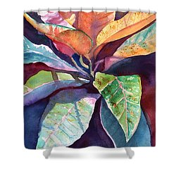 Colorful Tropical Leaves 3 Shower Curtain