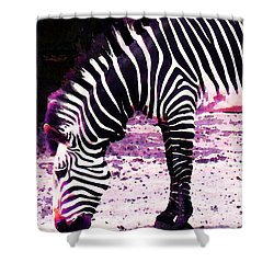 Colorful Zebra 2 - Buy Black And White Stripes Art Shower Curtain by Sharon Cummings