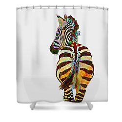Colorful Zebra Shower Curtain by Teresa Zieba
