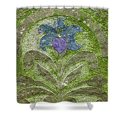 Colorized Moss Covered Gravestone  Shower Curtain by Jean Noren