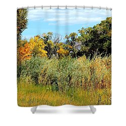 Colors Along The Gunnison Shower Curtain by Bob Hislop
