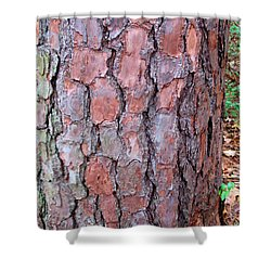 Colors And Patterns Of Pine Bark Shower Curtain by Connie Fox