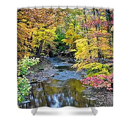 Colors Galore Shower Curtain by Frozen in Time Fine Art Photography