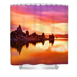 Colors Shower Curtain by Midori Chan