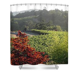 Colors Of Cali Shower Curtain