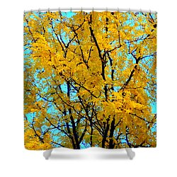 Colors Of Fall - Smatter Shower Curtain