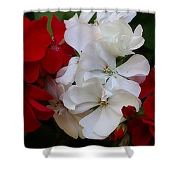 Colors Of Flowers Shower Curtain by James C Thomas