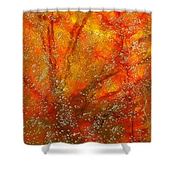 Colors Of Nature 9 Shower Curtain by Sami Tiainen