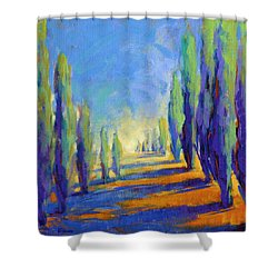 Colors Of Summer 8 Shower Curtain
