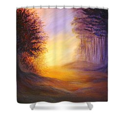Colors Of The Morning Light Shower Curtain by Lilia D